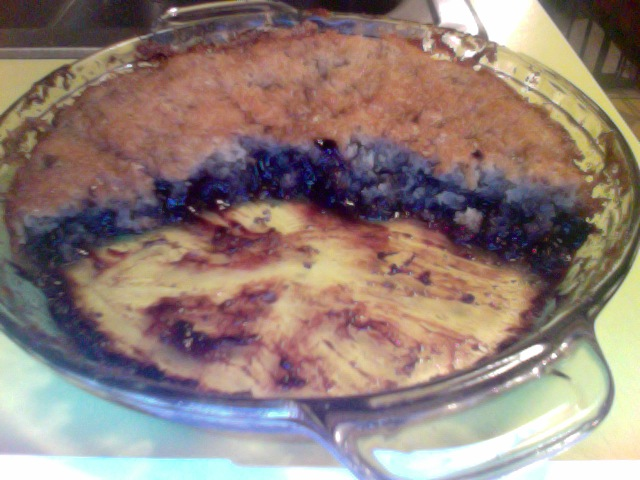 Lo's Infinitely-Smashable Blueberry Cobbler-Thingy (10-2-11)